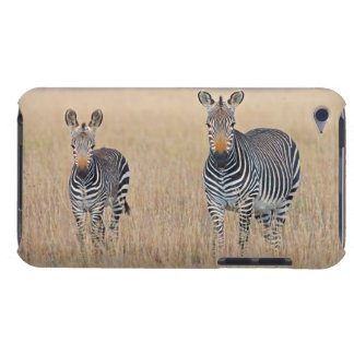 Plains zebra (Equus quagga) with foal Barely There iPod Cover