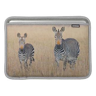 Plains zebra (Equus quagga) with foal Sleeve For MacBook Air