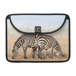 Plains Zebra Or Common Zebra (Equus Quagga) 2 Sleeve For MacBook Pro