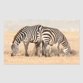 Plains Zebra Or Common Zebra (Equus Quagga) 2 Rectangular Sticker