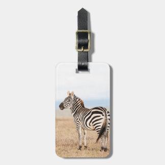 Plains Zebra Or Common Zebra (Equus Quagga) 3 Luggage Tag