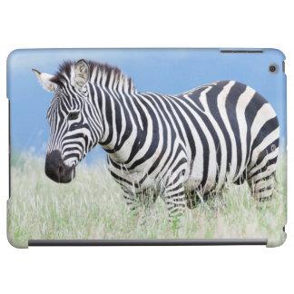 Plains Zebra Or Common Zebra (Equus Quagga) iPad Air Cover