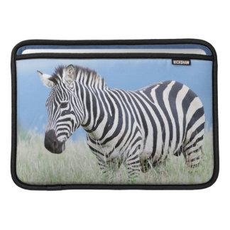 Plains Zebra Or Common Zebra (Equus Quagga) MacBook Air Sleeve