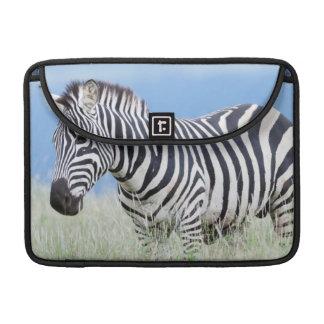 Plains Zebra Or Common Zebra (Equus Quagga) Sleeve For MacBooks