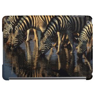 Plains Zebras (Equus Quagga) Herd Drinking iPad Air Cases
