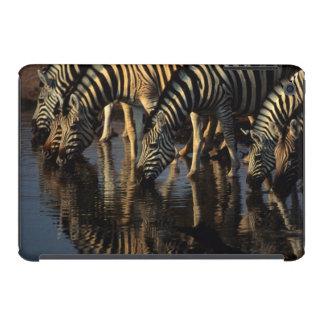 Plains Zebras (Equus Quagga) Herd Drinking iPad Mini Retina Cover