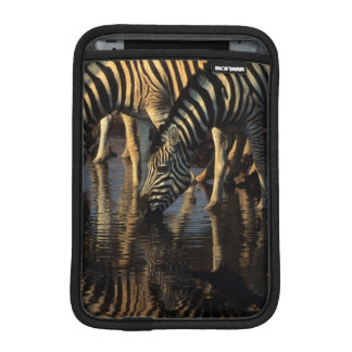 Plains Zebras (Equus Quagga) Herd Drinking iPad Mini Sleeve