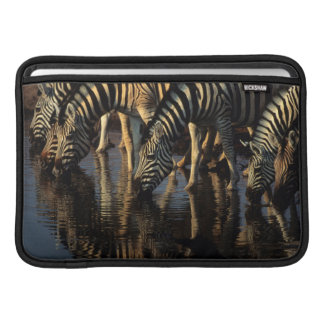 Plains Zebras (Equus Quagga) Herd Drinking MacBook Sleeve