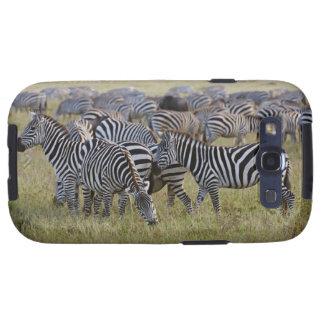 Plains Zebras on migration, Equus quagga, 2 Galaxy S3 Cover