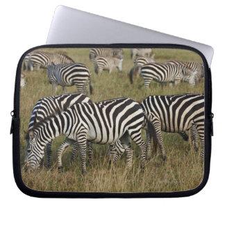 Plains Zebras on migration, Equus quagga, 3 Laptop Computer Sleeve