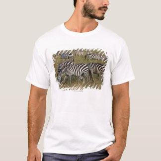 Plains Zebras on migration, Equus quagga, 3 T-Shirt