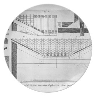 Plan of Tuscan atrium of the Cavedio house Dinner Plate