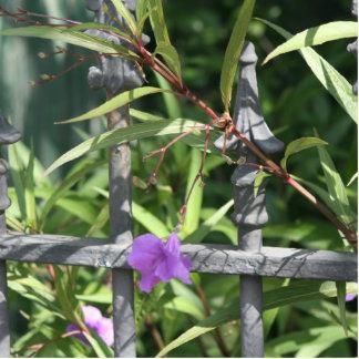 Planche la cerca, hojas del verde, flor púrpura escultura fotográfica