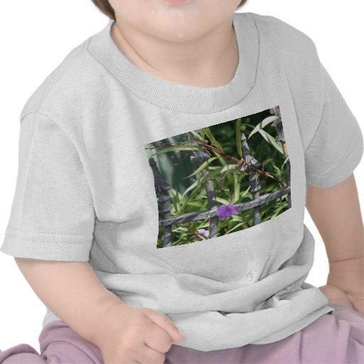 Planche la cerca, hojas del verde, flor púrpura camiseta