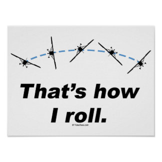 Plane How I Roll Print