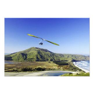 Planeador de caída península de Otago cerca de D Arte Fotográfico