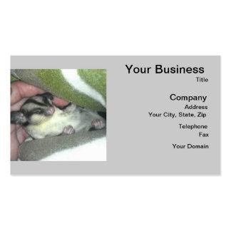 Planeador del azúcar que duerme en manta plantilla de tarjeta de negocio