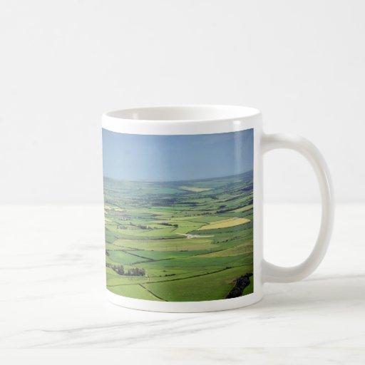 Planeador sobre el downland del este de Sussex Tazas De Café
