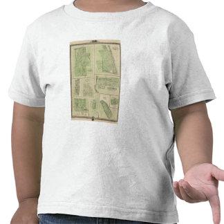 Planes de Maquoketa, Bellevue, Princeton Camiseta
