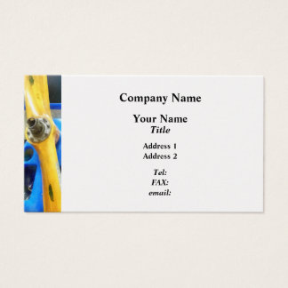 Planes - Great Lakes Sport Trainer Business Card