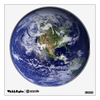 Planet Earth Wall Decal