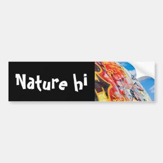 planet graffiti bumper sticker