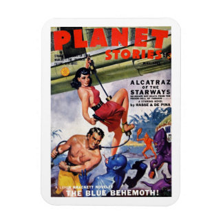 """Planet Stories"" Magnet"