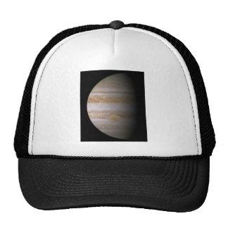 Planet Trucker Hat