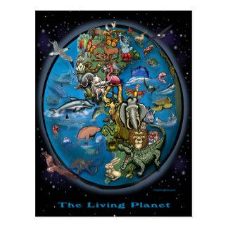 Planeta animal tarjetas postales