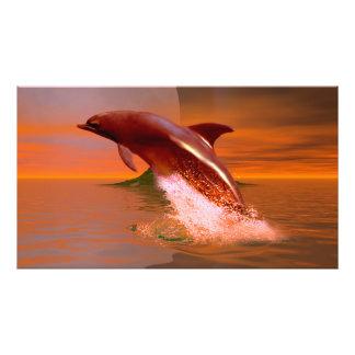 Planeta del delfín impresión fotográfica
