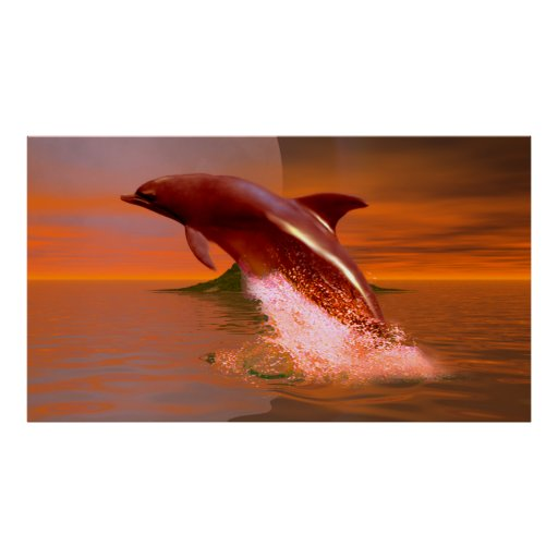 Planeta del delfín poster