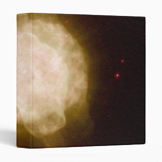 Planetary Nebula NGC 3918 Vinyl Binders