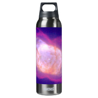 Planetary Nebula NGC 7027 in Infrared and Visible Thermos Bottle