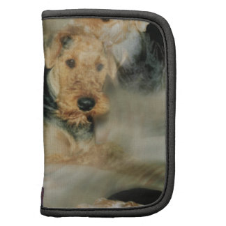 "planificador ""Airedale Terrier """