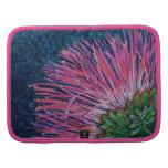 Planificador del folio del Mimosa de la bella arte