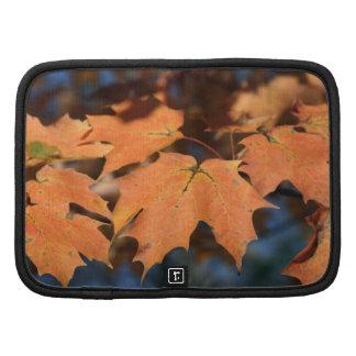 Planificador en folio de las hojas de otoño