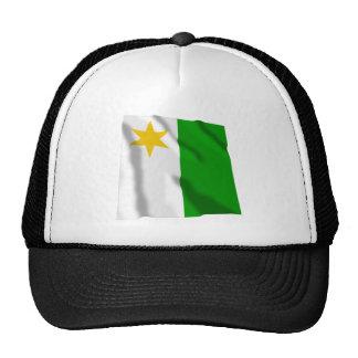 Planken Armorial Banner Hat