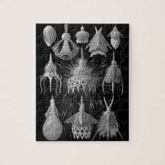 Plankton Shells in Black and White (Cyrtoidea) Jigsaw Puzzles