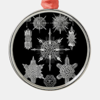 Plankton Skeletons in Black and White Metal Ornament