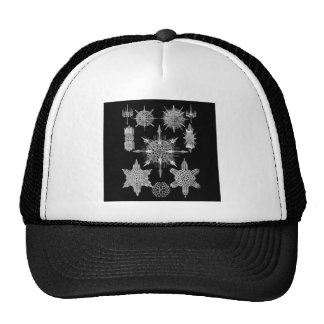 Plankton Skeletons in Black and White Trucker Hat