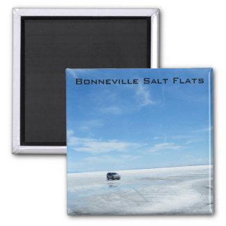 Planos de la sal de Bonneville Imanes De Nevera