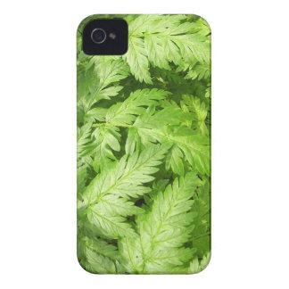 Plant Aegopodium Podagraria iPhone 4 Case-Mate Case