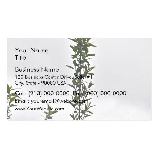 Plant Against Cloudy Sky Business Card