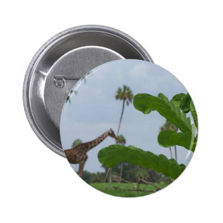 Plant and blue sky with giraffes in the background button