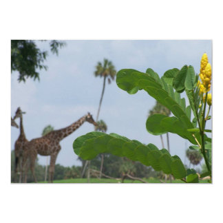 Plant and blue sky with giraffes in the background card