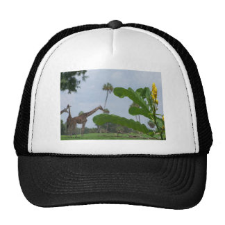Plant and blue sky with giraffes in the background trucker hat