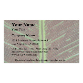 Plant Brown Sori Double-Sided Standard Business Cards (Pack Of 100)