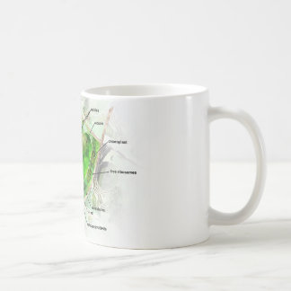 plant cell mugs