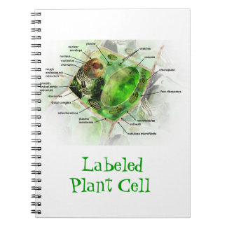 Plant Cell Spiral Note Book