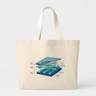 Plant cell wall diagram canvas bags